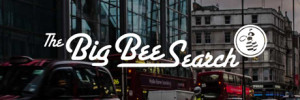 The Big Bee Search Ltd.